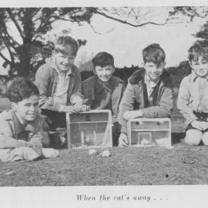 III No.2-1951-3 Spring Term