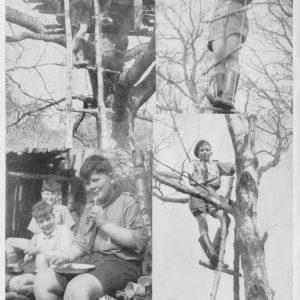 VI No.5-1957-3 SpringTerm